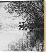 At The Lake-39 Wood Print