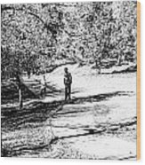 At The Lake-42 Wood Print