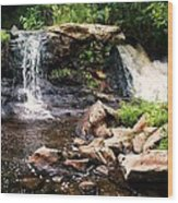 At The Mill Pond Dam Wood Print