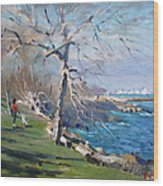 At The Park By Lake Ontario Wood Print