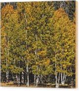At The Peak Wood Print