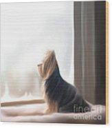 At The Window Wood Print