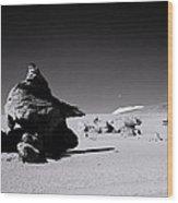 Atacama Desert Wood Print