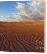 Atacama Desert Wilderness Wood Print