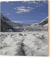 Athabasca Glacier Wood Print