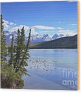 Athabasca River Scenery Wood Print