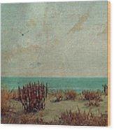 Atlantic City Seagull Wood Print