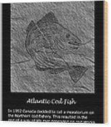 Atlantic Cod Fish Sketch Wood Print