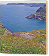 Atlantic Ocean From Signal Hill National Historic Site In Saint John's-nl Wood Print