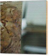 Atlantic Salmon Stocking Wood Print
