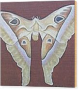 Atlas Moth Wood Print