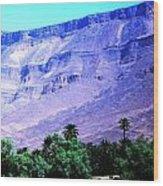 Atlas Mountains 46 Wood Print