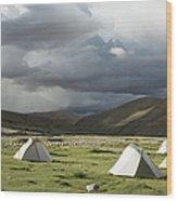 Atmospheric Grassy Camping Wood Print