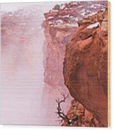Atop Canyonlands Wood Print