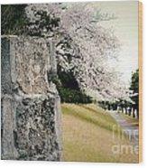 Atsugi Pillbox Walk  B Wood Print