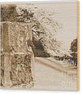 Atsugi Pillbox Walk  D Wood Print