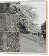 Atsugi Pillbox Walk  F Wood Print