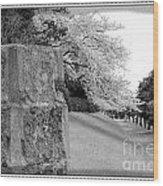 Atsugi Pillbox Walk  H Wood Print