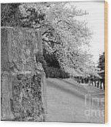 Atsugi Pillbox Walk  H1 Wood Print
