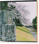 Atsugi Pillbox Walk  I Wood Print