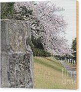 Atsugi Pillbox Walk Wood Print