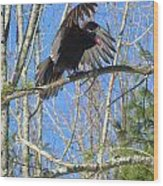 Attack Of The Turkey Vulture Wood Print