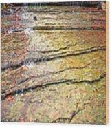 Au Train Falls IIi Wood Print