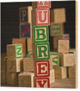 Aubrey - Alphabet Blocks Wood Print