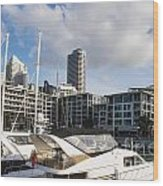 Auckland City View Wood Print