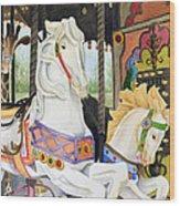 Audubon Carousel Wood Print