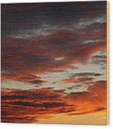 Audubon Sunset Light Wood Print