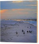 August Beach Morning With The Sea Gulls Wood Print