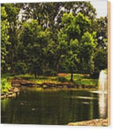 August By The Fountain Wood Print