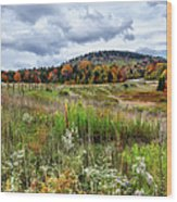 August Fall Colors Flowers And Trees I - West Virginia Wood Print