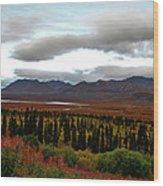 August In Alaska Wood Print