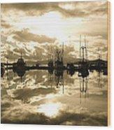 Auke Bay In Sepia Wood Print