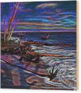 Aurora Borealis Over Florida Wood Print