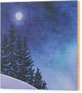 Aurora Borealis Winter Wood Print by Cecilia Brendel