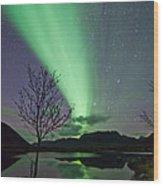 Auroras And Tree Wood Print by Frank Olsen