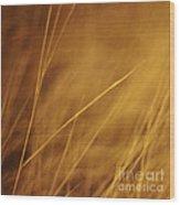 Aurum Wood Print by Priska Wettstein