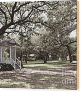 Austin Texas Southern Garden - Luther Fine Art Wood Print