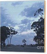 Australian Countryside Wood Print