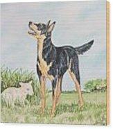 Australian Kelpie Wood Print