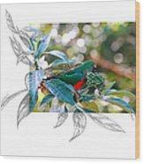 Australian King Parrot Wood Print
