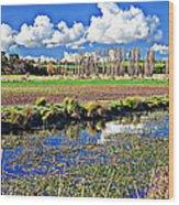 Australian Landscape Wood Print