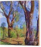 Australian Native Tree 2 Wood Print