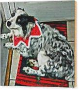 Australian Shepherd Christmas Dog Wood Print