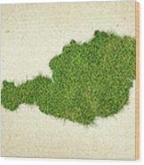Austria Grass Map Wood Print