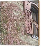 Austrian Spring Wood Print