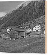 Austrian Village Monochrome Wood Print